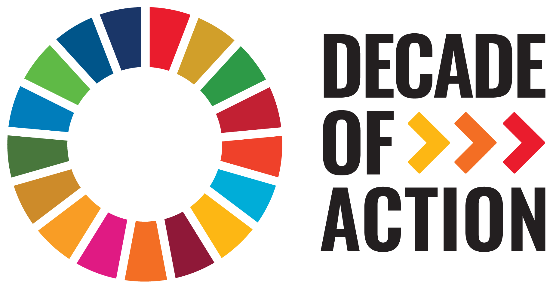 sdg_decade_of_action_e.png
