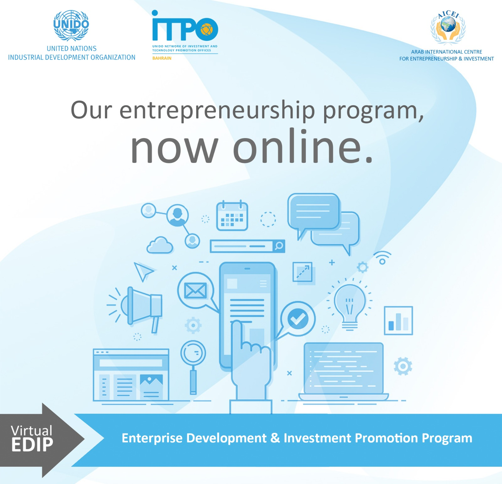Virtual Enterprise Development & Investment Promotion Program